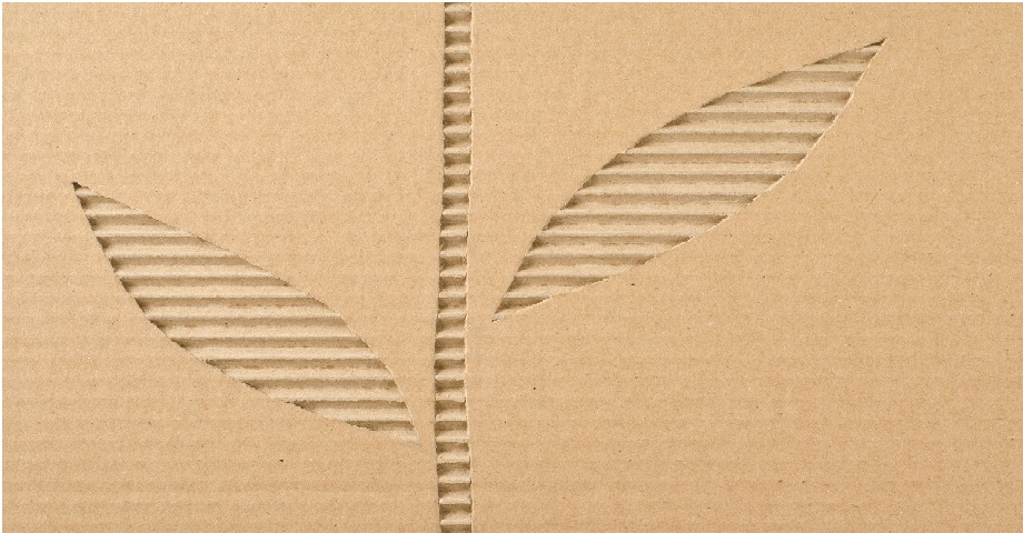 Corrugated Cardboard as sustainable packaging solution
