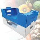 Akylux® Polypropylene Boxes the Preferred Choice to Transport Vegetables and Fruits