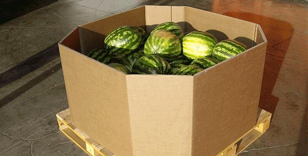 Heavy duty is for the summer: Packaging for large calibre fruit
